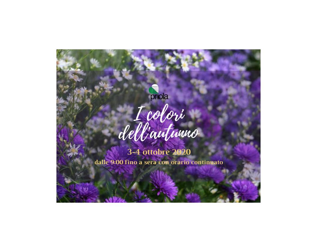 """3-4 Ottobre 2020: """"I colori dell'autunno"""""""